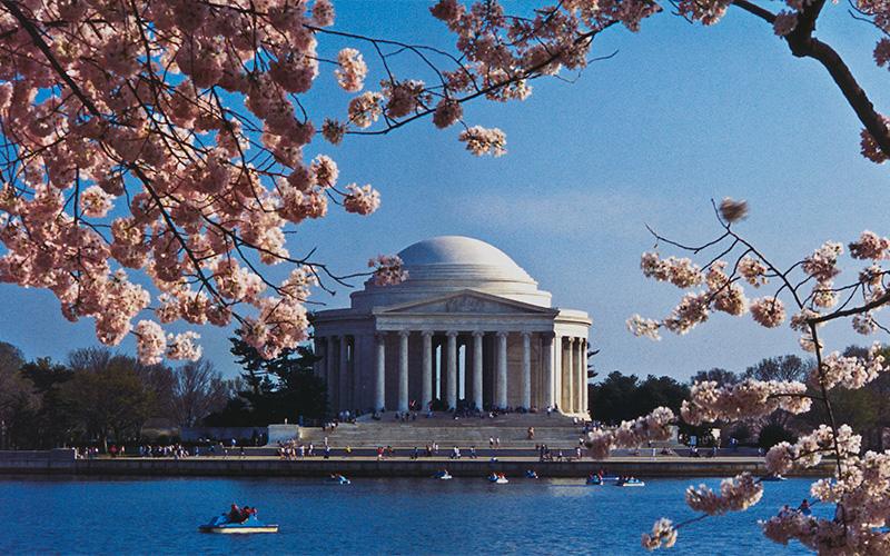 Be My Guest: Washington DC